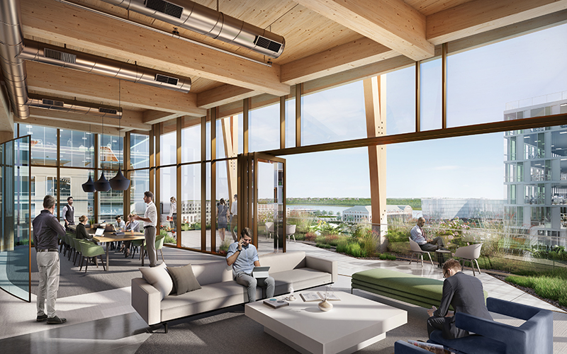 mass timber office concept